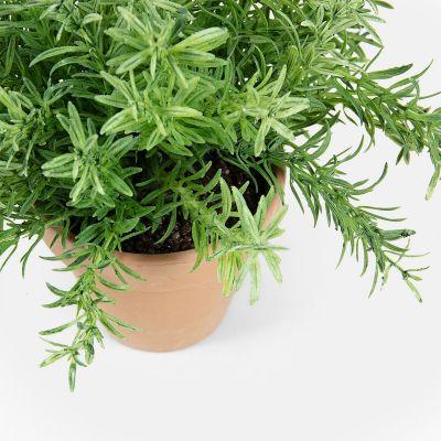 Plantă artificială ROSEMARY